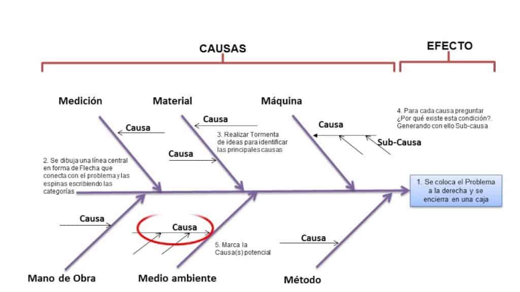Diagrama De Pescado     wiring       diagram    on the